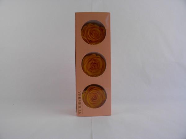 Gefrier Rose Saffron Yellow
